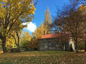 秋のアロータウン